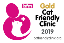 Logo Cat Friendly Clinic Gold
